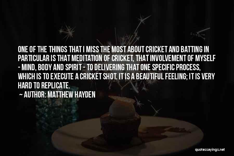 Execute Quotes By Matthew Hayden