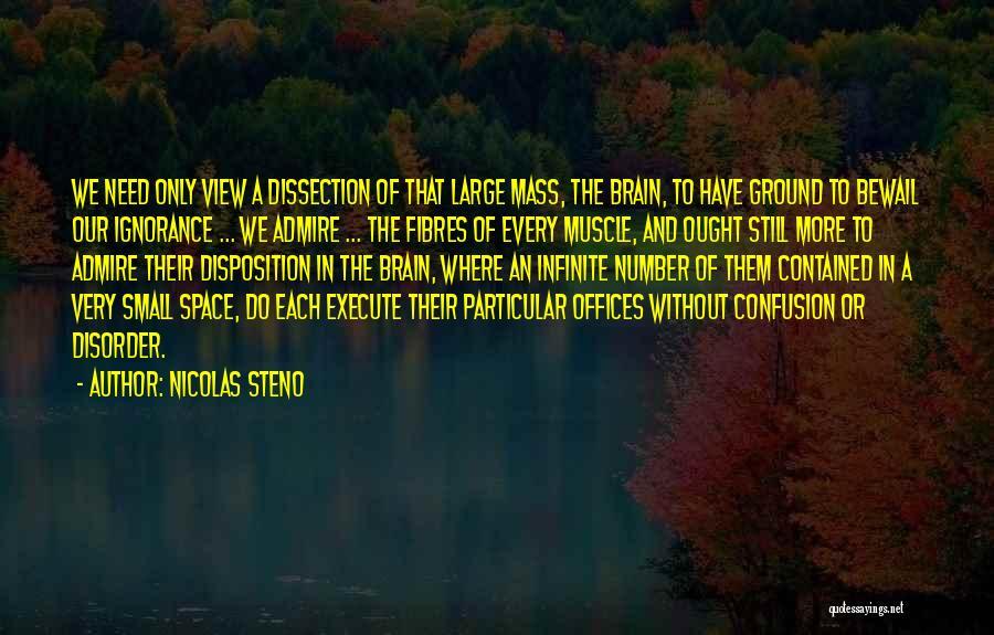 Execute Quotes By Nicolas Steno