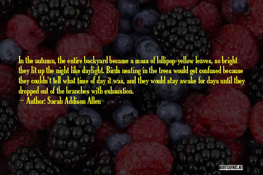 Exhaustion Quotes By Sarah Addison Allen
