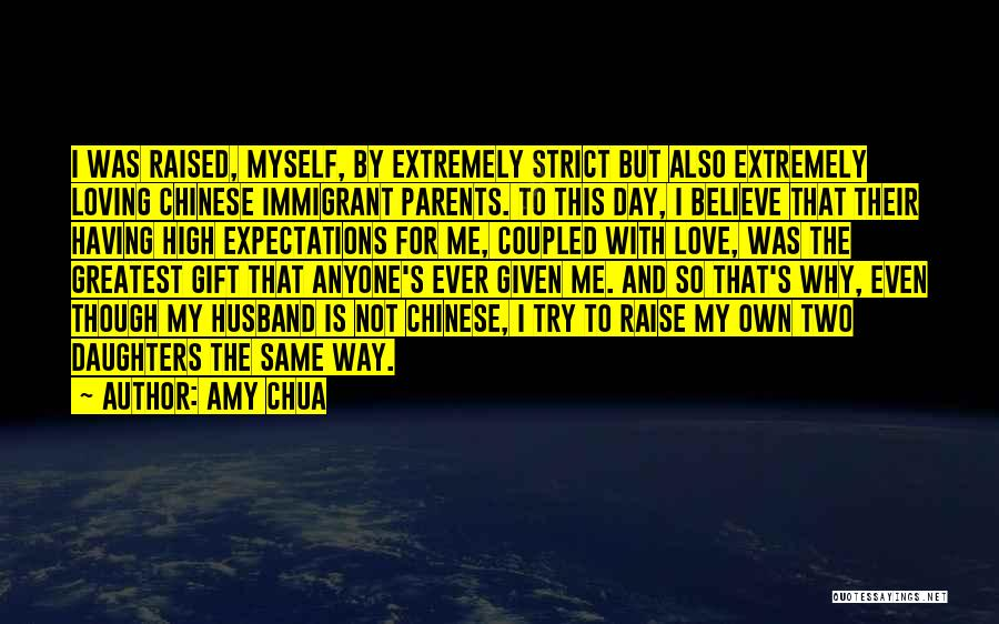 Expectations From Husband Quotes By Amy Chua