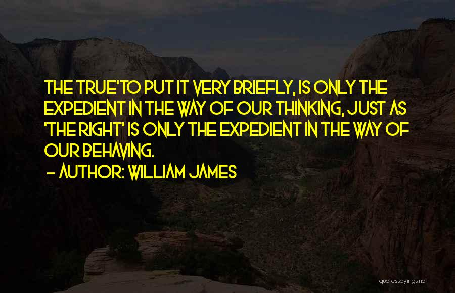 Expedient Quotes By William James