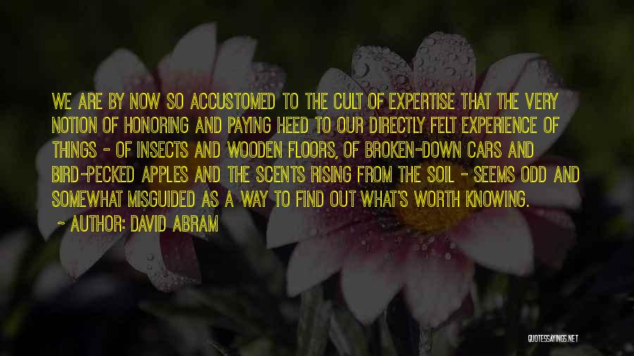 Experience Expertise Quotes By David Abram