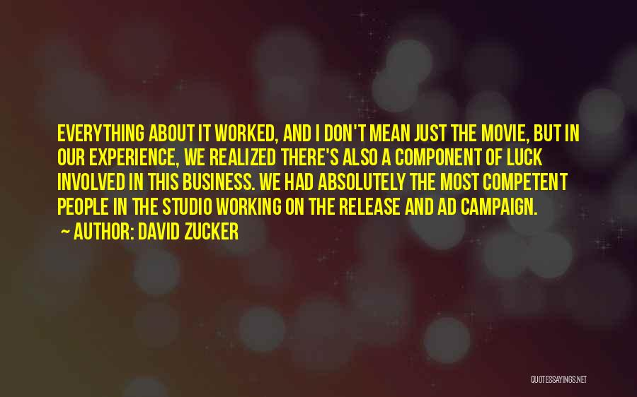 Experience In Business Quotes By David Zucker