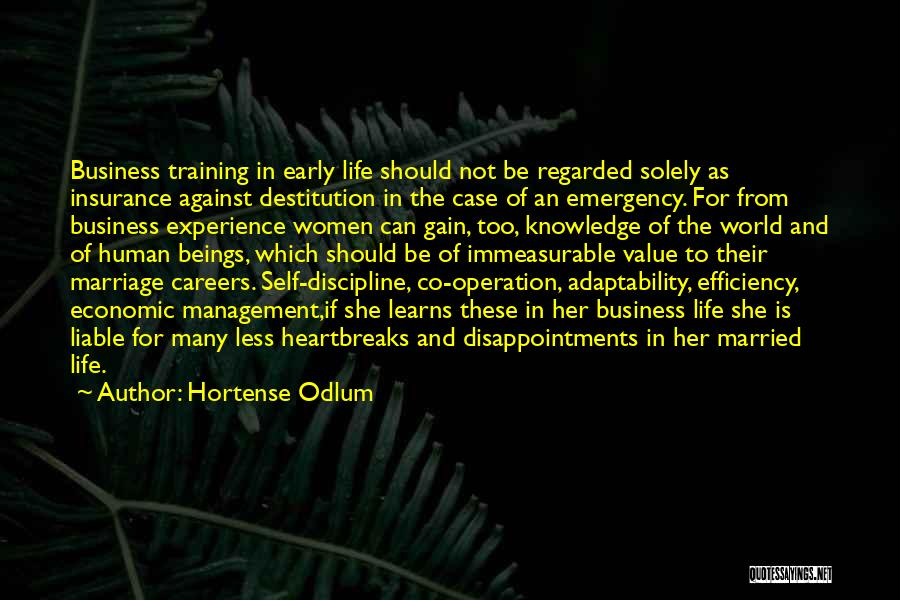 Experience In Business Quotes By Hortense Odlum