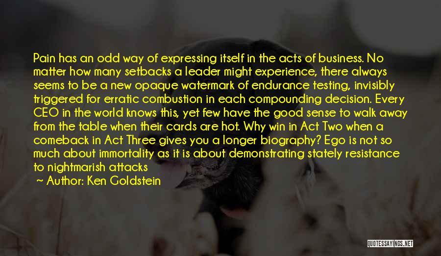 Experience In Business Quotes By Ken Goldstein