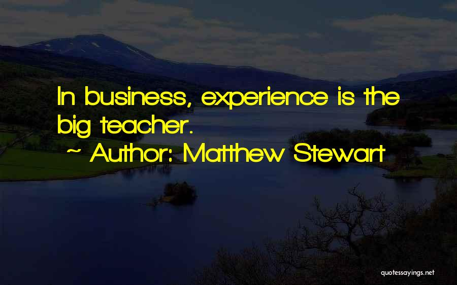 Experience In Business Quotes By Matthew Stewart