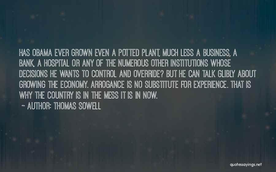 Experience In Business Quotes By Thomas Sowell