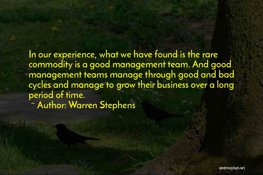 Experience In Business Quotes By Warren Stephens