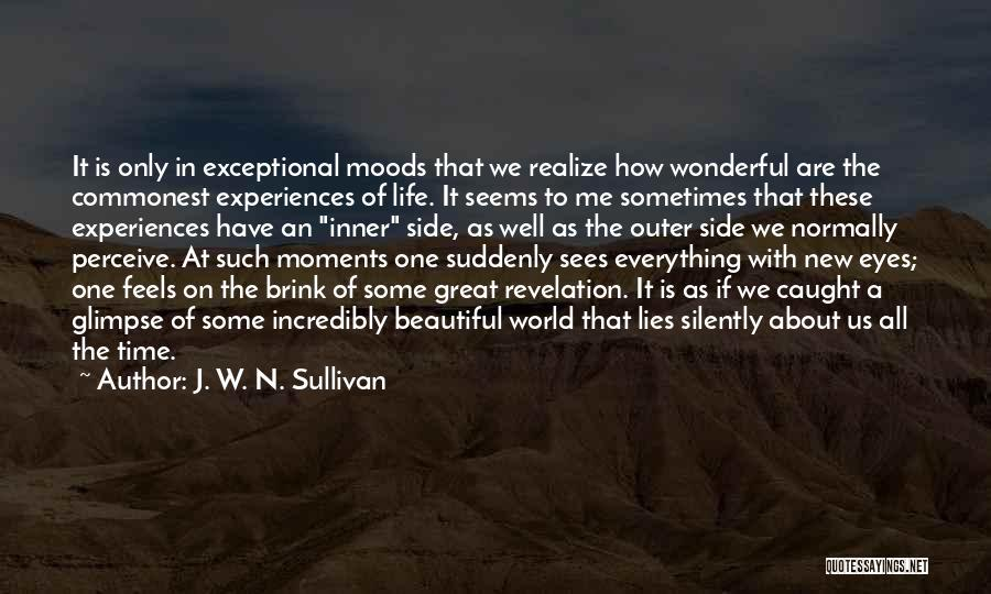 Experiences In Life Quotes By J. W. N. Sullivan