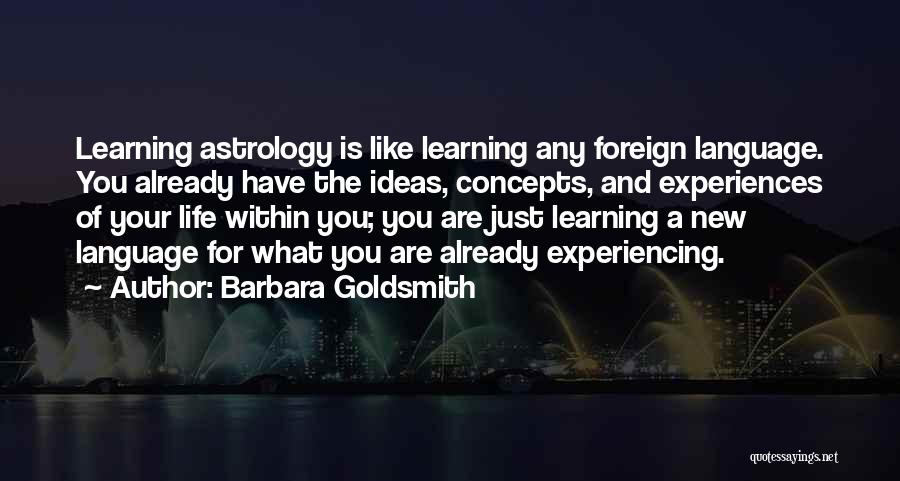 Experiencing New Things Quotes By Barbara Goldsmith