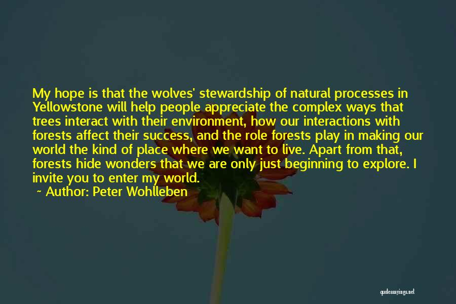 Explore The World Quotes By Peter Wohlleben