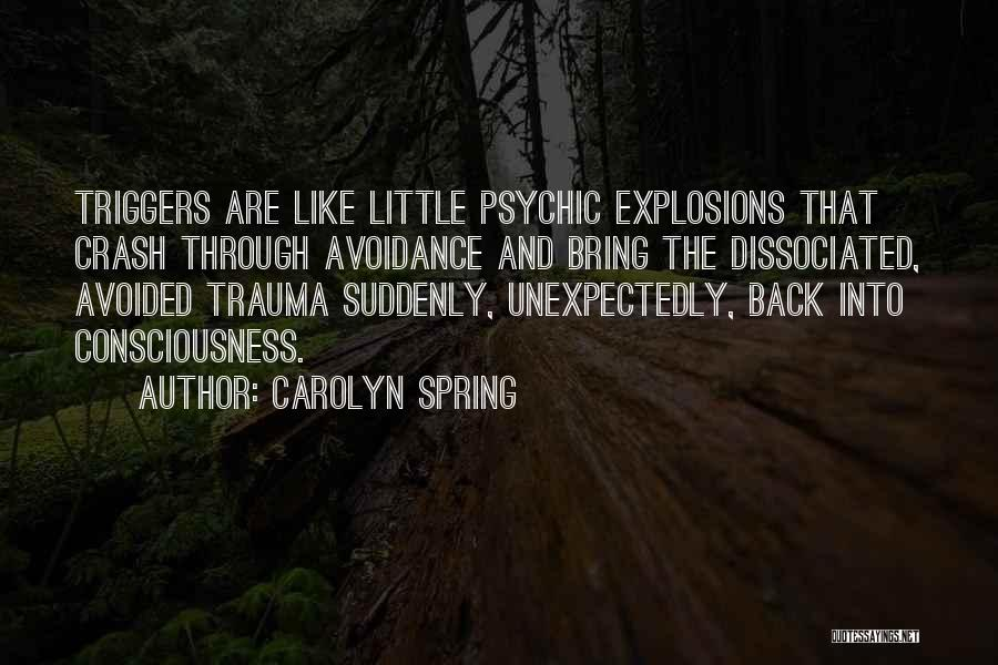 Explosions Quotes By Carolyn Spring