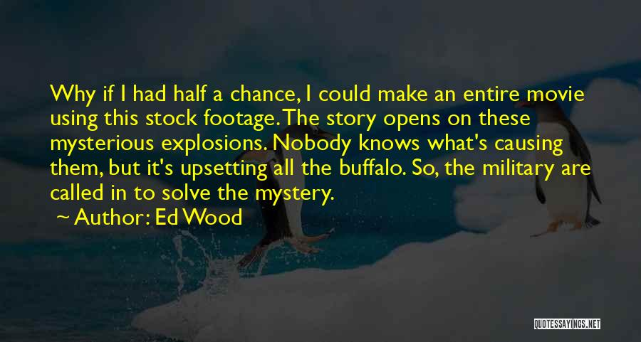 Explosions Quotes By Ed Wood