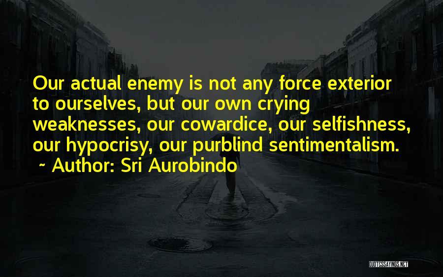 Exterior Quotes By Sri Aurobindo