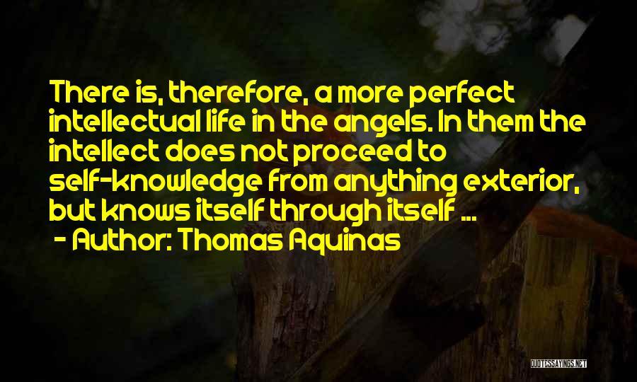 Exterior Quotes By Thomas Aquinas