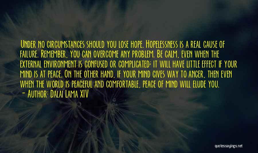 External Environment Quotes By Dalai Lama XIV