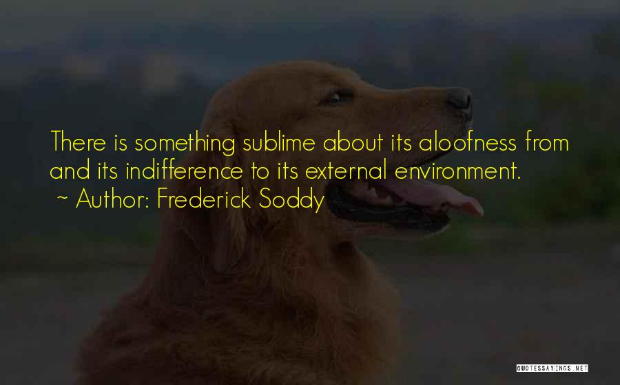 External Environment Quotes By Frederick Soddy