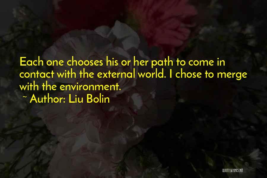 External Environment Quotes By Liu Bolin