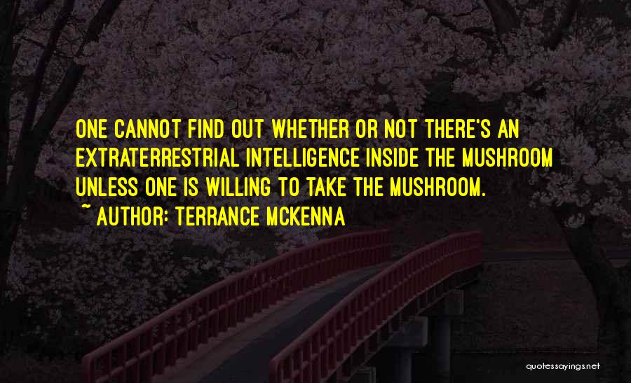 Extraterrestrial Quotes By Terrance McKenna