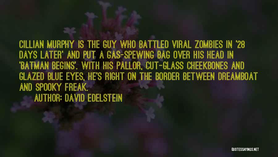Eye Bag Quotes By David Edelstein