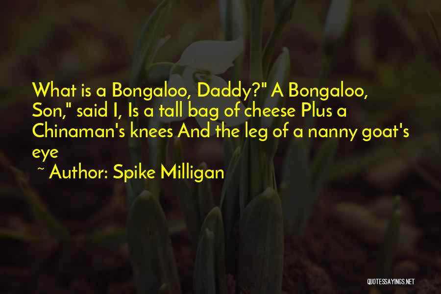 Eye Bag Quotes By Spike Milligan