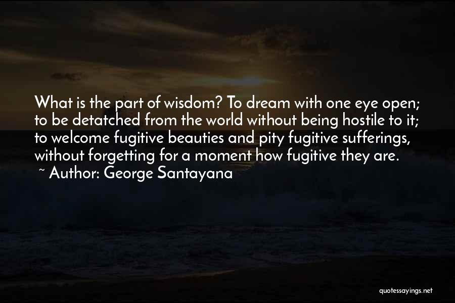 Eye Dream Quotes By George Santayana