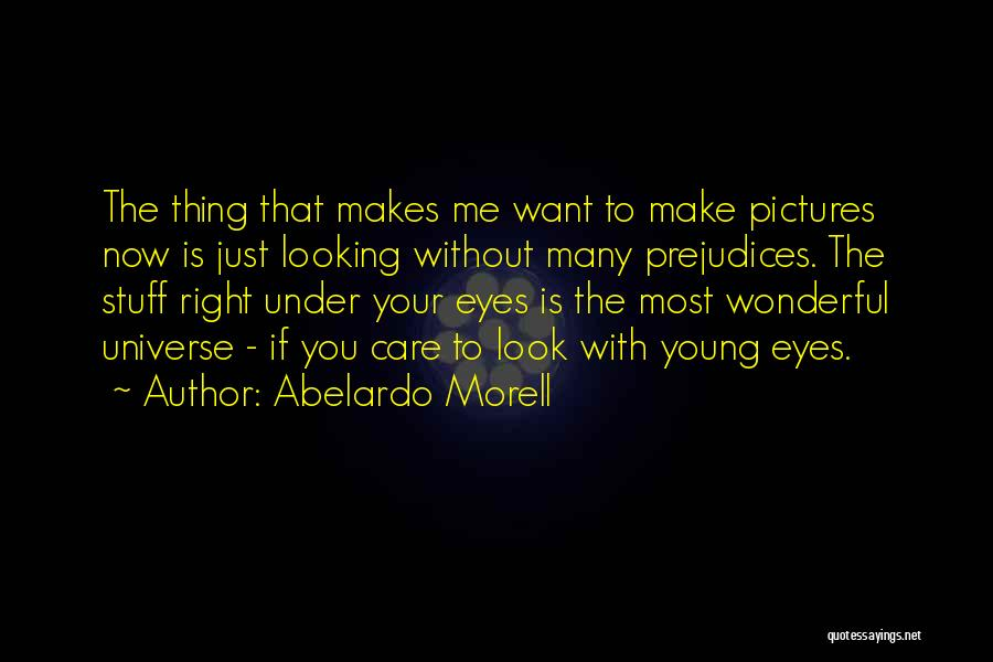 Eye Pictures Quotes By Abelardo Morell