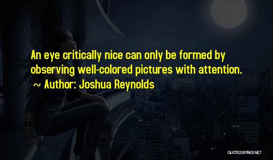 Eye Pictures Quotes By Joshua Reynolds