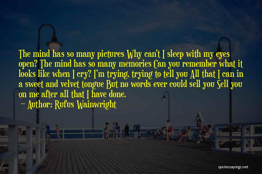 Eye Pictures Quotes By Rufus Wainwright