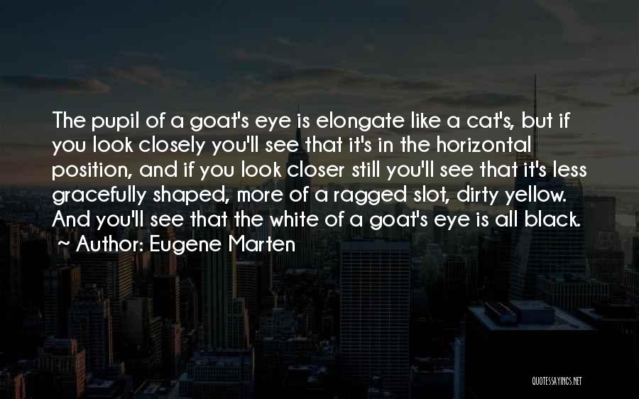 Eye Pupil Quotes By Eugene Marten