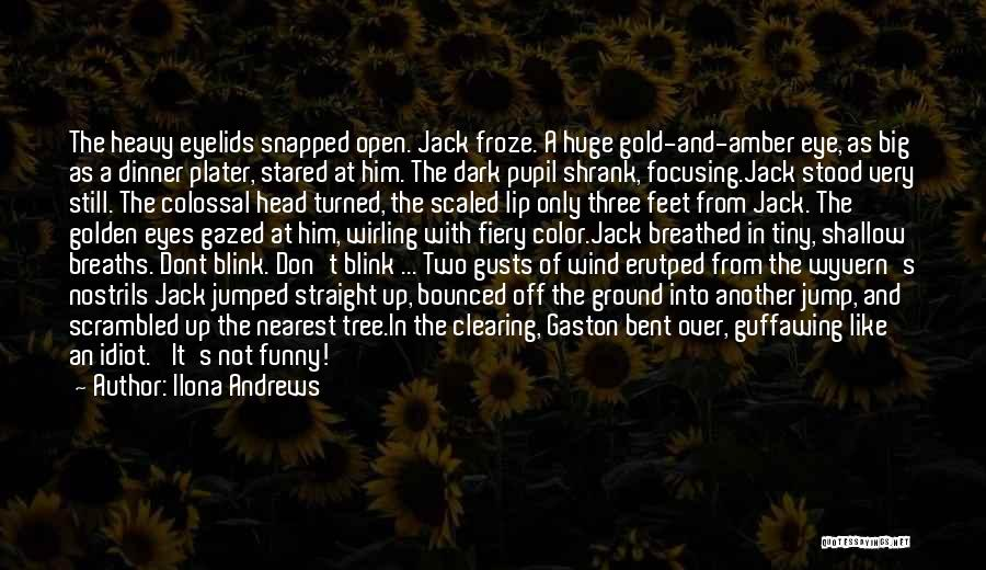 Eye Pupil Quotes By Ilona Andrews
