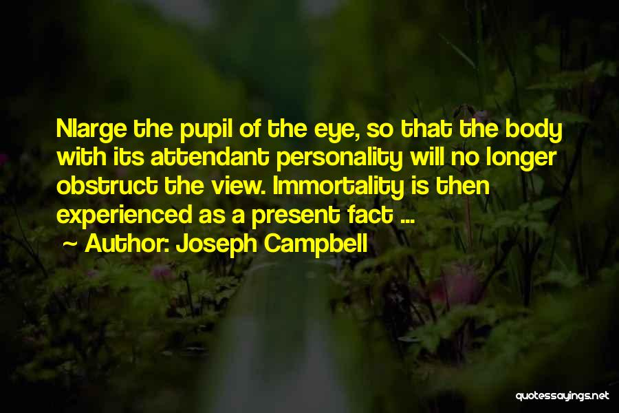 Eye Pupil Quotes By Joseph Campbell