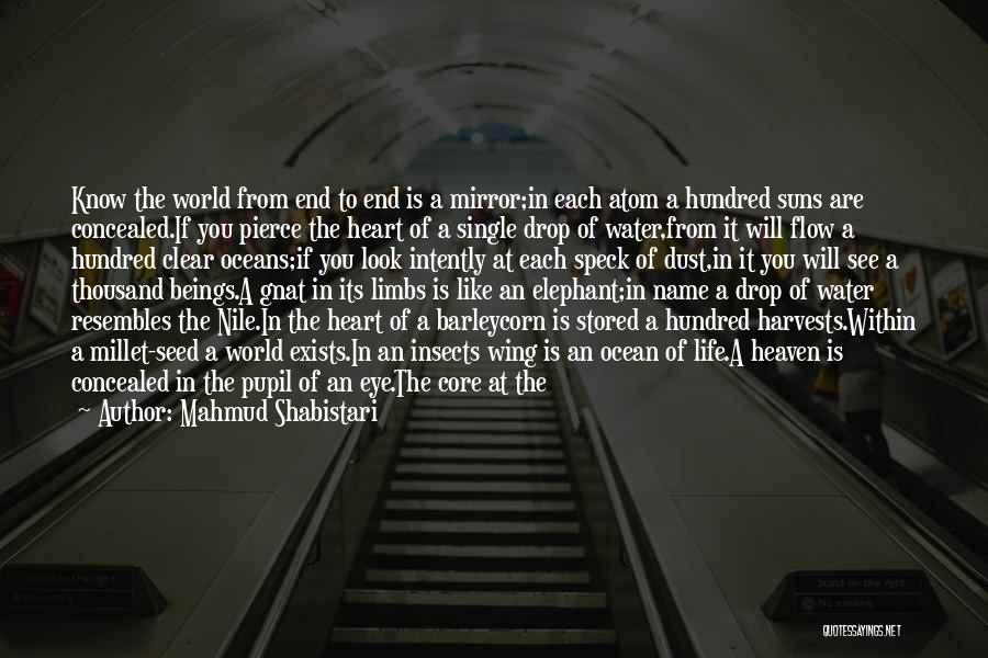 Eye Pupil Quotes By Mahmud Shabistari