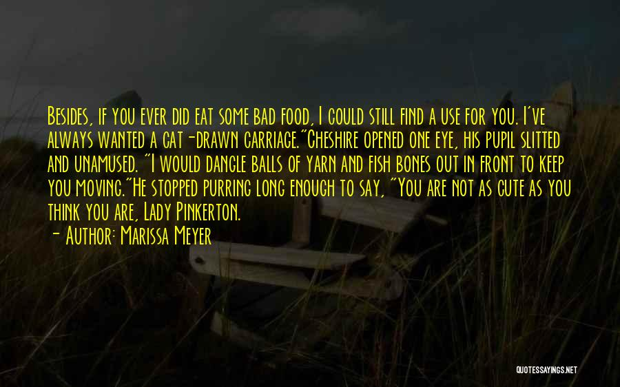 Eye Pupil Quotes By Marissa Meyer