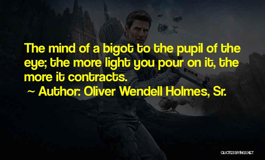 Eye Pupil Quotes By Oliver Wendell Holmes, Sr.