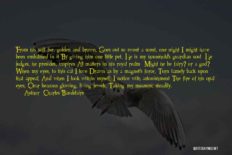Eyes In Night Quotes By Charles Baudelaire