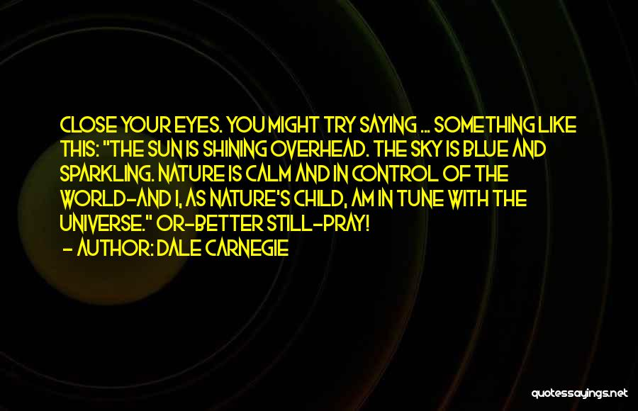 Eyes Saying Quotes By Dale Carnegie