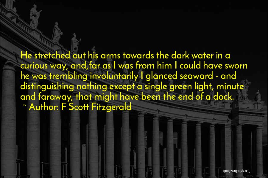 F Scott Fitzgerald Quotes 222616