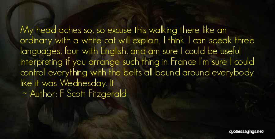F Scott Fitzgerald Quotes 315202