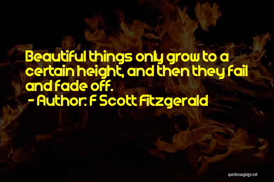 F Scott Fitzgerald Quotes 792594