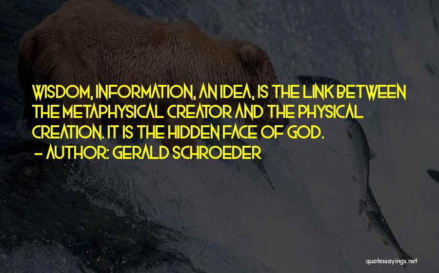 Face Hidden Quotes By Gerald Schroeder