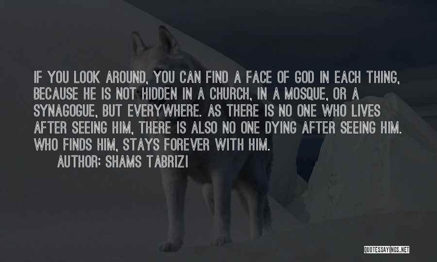 Face Hidden Quotes By Shams Tabrizi