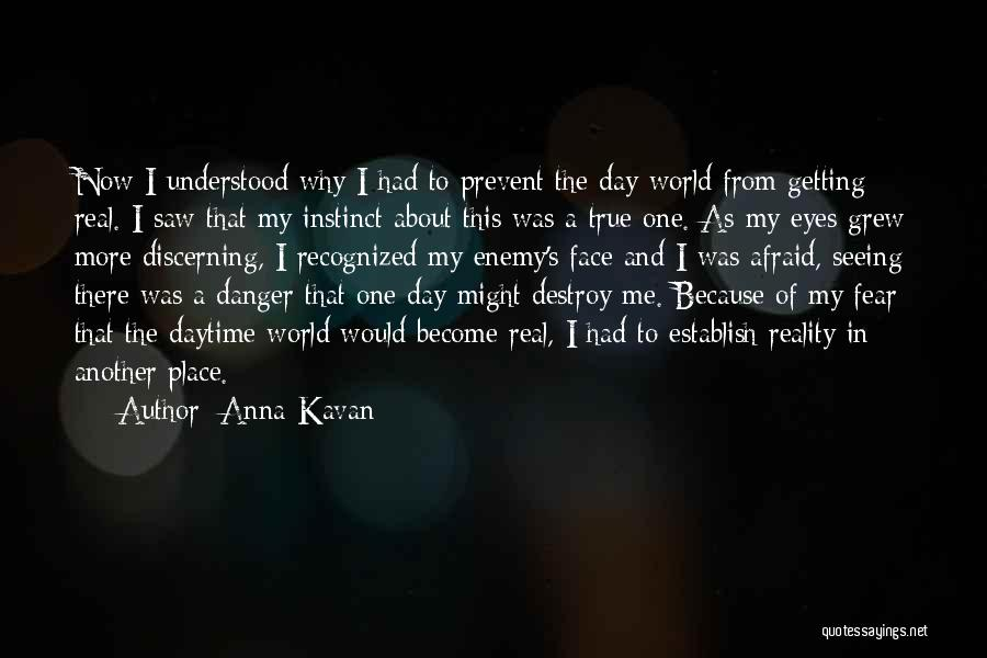 Face The Real World Quotes By Anna Kavan