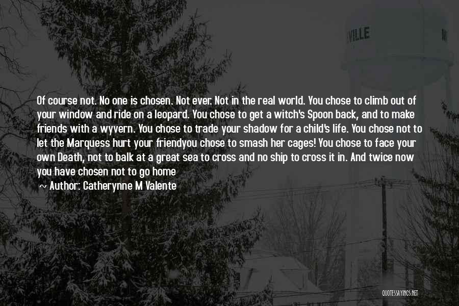 Face The Real World Quotes By Catherynne M Valente