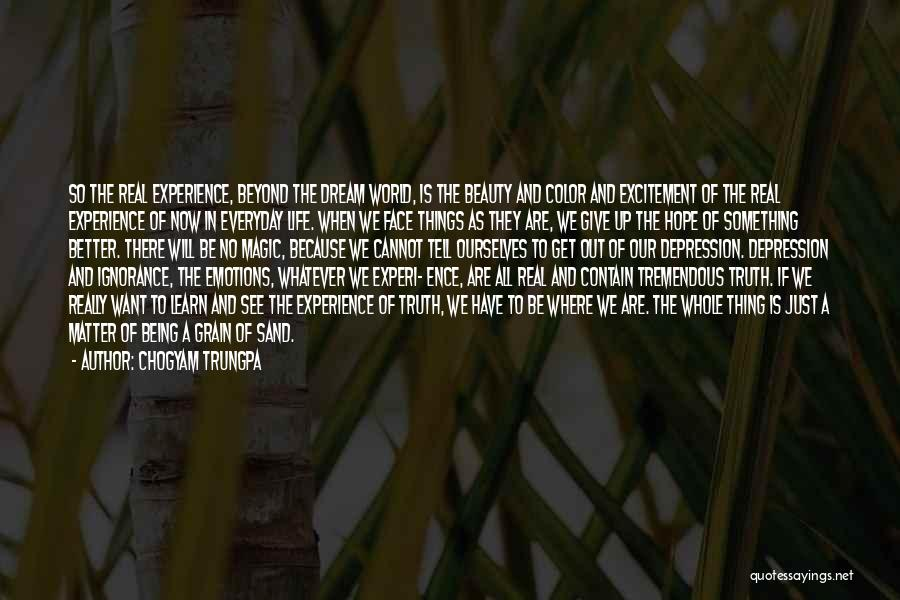 Face The Real World Quotes By Chogyam Trungpa