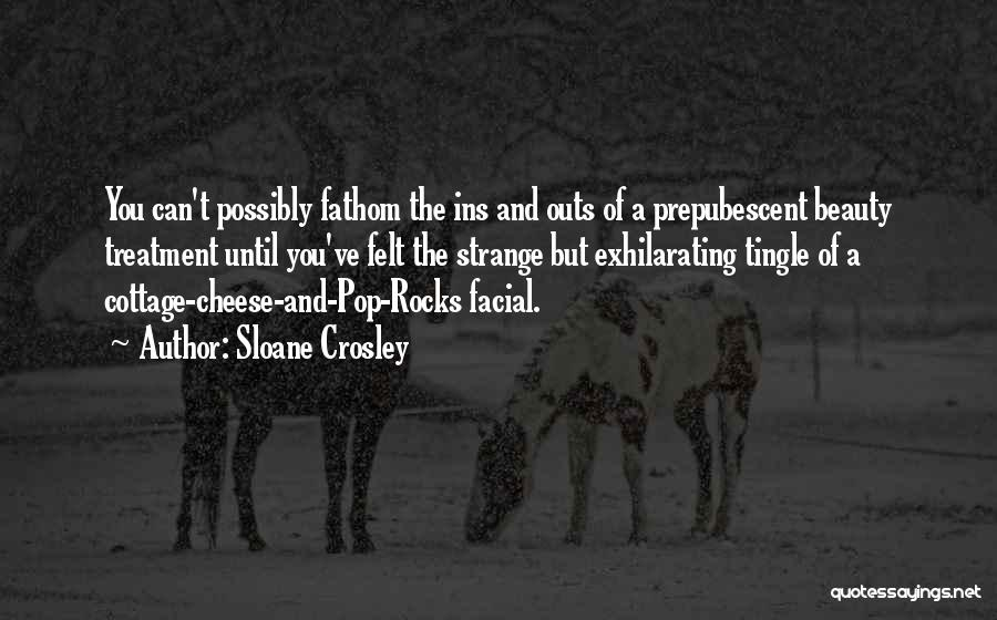 Facial Treatment Quotes By Sloane Crosley