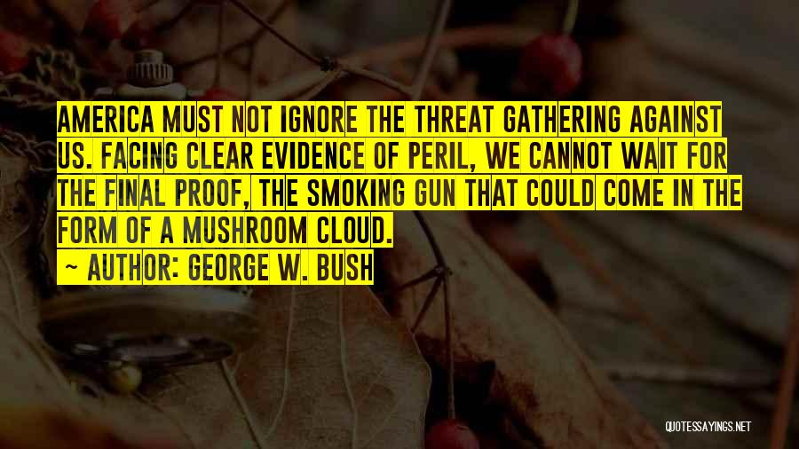 Facing Quotes By George W. Bush