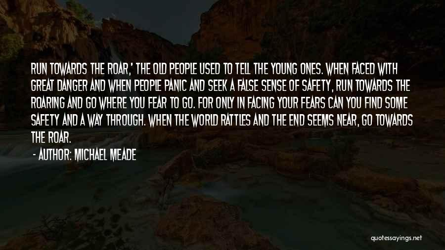 Facing Quotes By Michael Meade