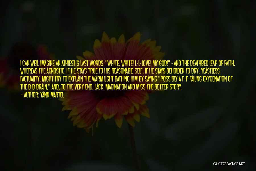 Failing Love Quotes By Yann Martel