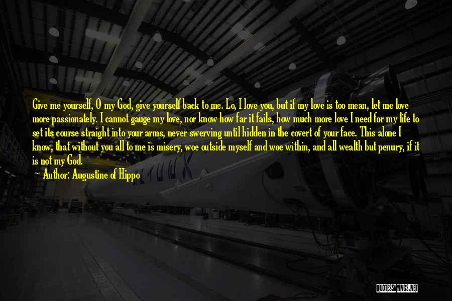 Fails In Life Quotes By Augustine Of Hippo